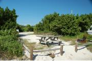 Photo: 018, Looking from the shore line thru the access point the picnic table and fire ring are to the near side.