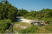 Photo: 024, With wooden fence rails marking the edge of the site the picnic table and fire ring are located at the near end of the site. A brown motor home is glimpsed thru the vegetation to the right.