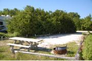 Photo: 024, With the shade from the buttonwoods falling across the site, the picnic table and fire ring are to the near side. A white motor home is visible on the site to the left.
