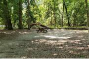 A Hardwood Hammock with scattered palmetto's and grasses surrounds the campsite.  Here a guy sits next to his tent reading a book and enjoying the piece and quiet.  This site is level has water/electric on right side of site and has a fire ring, picnic table and cloths line posts.