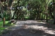 Campsite 11 is a partial sunny site with a gravel foundation located on the right hand side of the road.  Looking into the site on the right is the water and 50amp electrical service. There is a picnic table and ground campfire ring.  At the front left side of the site is the brown site marker.