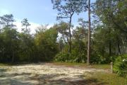 This site is spacious and surrounded by saw palmetto and oaks. Amenities include water/electric, picnic table, campfire ring and clothes line.