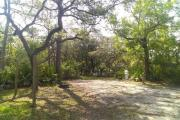 Oblong in shape, this site's camping area is spacious, somewhat secluded and surrounded by a canopy of oaks overhead.