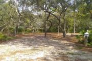 Site 14 is a small shady site, located inside our loop-shaped campground. Although small in size, this campsite has an island of sand live oak trees in the center allowing for plenty of room between tents.