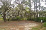 A dense canopy of Sand live oak trees offer part shade most of