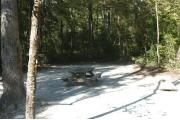This view is from the back of the site looking toward the campground road.  The view across the road is of heavily wooded mixed hardwood forest.  There is a picnic table located in the center of the site and a ground grill on the right.