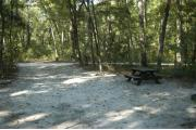 This view is from the left of the entrance with site marker #39 showing.  This is a back-in site that can accommodate campers up to 42 feet in length.  The site is surrounded by mixed hardwood trees and shrubs.
