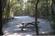 This view is from the back of the site looking toward the campground road.  The water and electric hookups are on the left, the picnic table is in the back center of the site.  The view across the road is of heavily wooded mixed hardwood forest.  There are mixed hardwood trees and shrubs on either side of this site.