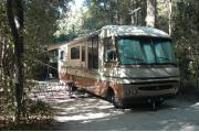 This view is from the entrance looking in.  There is a brown and tan RV parked in the site with it awning out.  The corner of a tan canopy can be seen behind the RV with chairs set up under it.  The site is surrounded with mixed hardwood trees and shrubs.