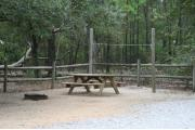 Picnic table and clothes line with ground grill.