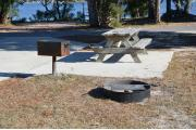A fire pit, an accessible grill and picnic table are pleasantly located on a paved campsite near a large oak.
