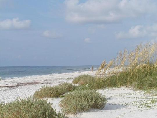 St George Island Camping Reservations