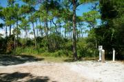 A gravel base campsite with native pine trees in the background.  This site has partial shade and is a preferred tent site.