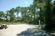 A shell base campsite with native pine trees in the background with a view of dunes.  This site has very limited shade.