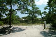 A shell base campsite with native pine trees in the background with a view of dunes.  This site has limited shade.