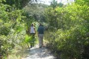Two hikers stroll down one of the many miles of shaded nature trail toward the brackish water of the Tomoka River. From the shoreline there are many opportunities for wildlife viewing, some of our frequent visitors include: manatee, dolphin, and varieties of fish, as well as birds. Our 12 miles of nature trail meander thru a variety of plant communities, and are accessible to bikers as well as hikers.