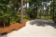 This photo shows the surrounding Pine trees and a nice view of the wiregrass area behind this site.