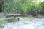 Picnic table and fire pit/grill with saw palmetto and small oak trees behind them.