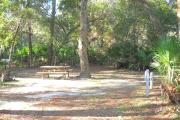 42x30 foot shell rock camp site with electric and water hook ups, picnic table by oak tree in middle of site.
