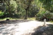 47x28 foot shell rock camp site with electric and water hook ups shaded under oak trees, with a cabbage palm at road edge of site. A large oak stands at rear of site.