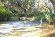 30x22 foot shell rock camp site with water and electric hook ups surrounded by saw palmetto with large oaks in the rear.