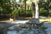Picnic table with two oak trees behind it and fire pit / grill on left side.