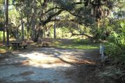 46x21 foot shell rock site with water and electric hook ups on the right side by saw palmetto. Picnic table and fire grill on left. Entire site is shaded by large oaks.