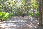 43x17 foot shell rock site with water and electric hook ups on right side behind a pine tree. On left side large oak tree in rear and saw palmetto in front.