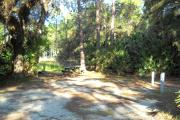 37x22 foot shell rock site with water and electric hook ups on right side surrounded by palmettos. Picnic table and three pine trees in rear. Large oak tree on left side.