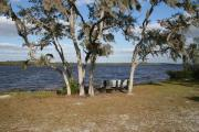 A view of the lake from the swimming area with a bench nestled in between the trees.