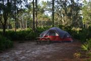 A view a one of the campsites with a tent nestled in the corner underneath some shade trees, overlooking the woods.