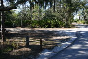 Looking at LOOP 1 #10 from camping area road – Partially shaded site surrounded by palmettos and green trees;