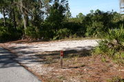 In LOOP 1 #12, a better view of the entrance to the site more palmetto and trees surround the site. Site Marker is on the right side of the main road