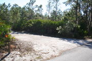 In LOOP 1 #15, a better view of the entrance to the site more palmetto and trees surround the site. Site Marker is on the right side of the main road