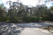 In LOOP 1 #26, a better view of the entrance to the site more palmetto and trees surround the site. Site Marker is on the right side of the main road