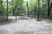 A September view of the picnic table, and fire ring area, and post for hanging your lantern from within campsite #1.  Site is surrounded on three sides by a mixed oak, pine, and cabbage palm forest.