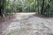 A September view of the campground drive from within campsite #1, electricity and water hookups are seen on the left side of the tent/RV space.  Site is surrounded on three sides by a mixed oak, pine, and cabbage palm forest.