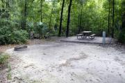 A September view of the picnic table, and fire ring area, and post for hanging your lantern from within campsite #3.  Site is surrounded on three sides by a mixed oak, pine, and cabbage palm forest.