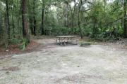 A September view of the picnic table, tent pad, and lantern post for hanging your lantern from within campsite #8.  Site is surrounded on three sides by a mixed oak, pine, and cabbage palm forest.