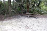 A September view of the campground drive from within campsite #17, showing the picnic table and fire ring.  Site is surrounded on three sides by a mixed oak, pine, and cabbage palm forest.