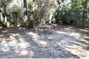 A September view of the picnic table, fire ring, and lantern post for hanging your lantern from within campsite #18.  Site is surrounded on three sides by a mixed oak, pine, and cabbage palm forest.