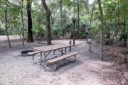 A September view of tent site #19, showing raised tent pad, fire ring, water and electrical hookups and picnic table.  Site is surrounded on three sides by a mixed oak, pine, and cabbage palm forest.