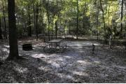 A September view of tent site #22, showing raised tent pad, with fire ring in foreground, picnic table, and lantern post for your lantern, and water and electrical hookups on left. Site is surrounded on three sides by a mixed oak, pine, and cabbage palm forest.