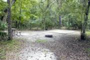 A September view of tent site #24, showing raised tent pad, with fire ring in foreground, picnic table to left, and lantern post for your lantern.   Water and electrical hookups are a short distance away.  Site is surrounded on three sides by a mixed oak, pine, and cabbage palm forest.