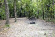 A September view of tent site #31, showing raised tent pad, fire ring, picnic table and lantern post.  Water and electrical hookups are a short distance away.  Site is surrounded on three sides by a mixed oak, pine, and cabbage palm forest.