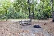 A September view of tent site #32, showing raised tent pad, fire ring, picnic table and lantern post.  Water and electrical hookups are a short distance away.  Site is surrounded on three sides by a mixed oak, pine, and cabbage palm forest.