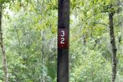 Campsite signpost for site #32 with typical surrounding oak, pine, and palm vegetation in background.