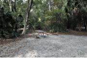 A September view of the picnic table, fire ring, and lantern post for hanging your lantern from within campsite #35.  Site is surrounded on three sides by a mixed oak, pine, and cabbage palm forest.
