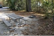 A September view from within campsite #40.  The picnic table, fire ring, and grill are seen on right.  Site is surrounded on three sides by a mixed oak, pine, and cabbage palm forest.  On the right side of the picture an RV on an adjacent site is seen through the woods.