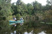 Two canoeists paddling in the spring run at Blue Spring State Park.